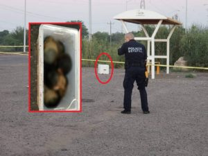 Siete cabezas, una mano y un pie fueron encontrados en una hielera en Sonora